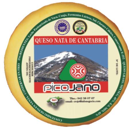 Quesuco de Nata Pico Jano 500g.